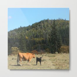 In the country.... Metal Print