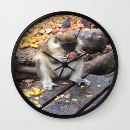 Green Monkey Munching Wall Clock