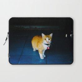 Cat in Ayutthaya Laptop Sleeve