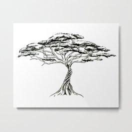 Whistling Thorn , Zen Bonsai African Tree Metal Print