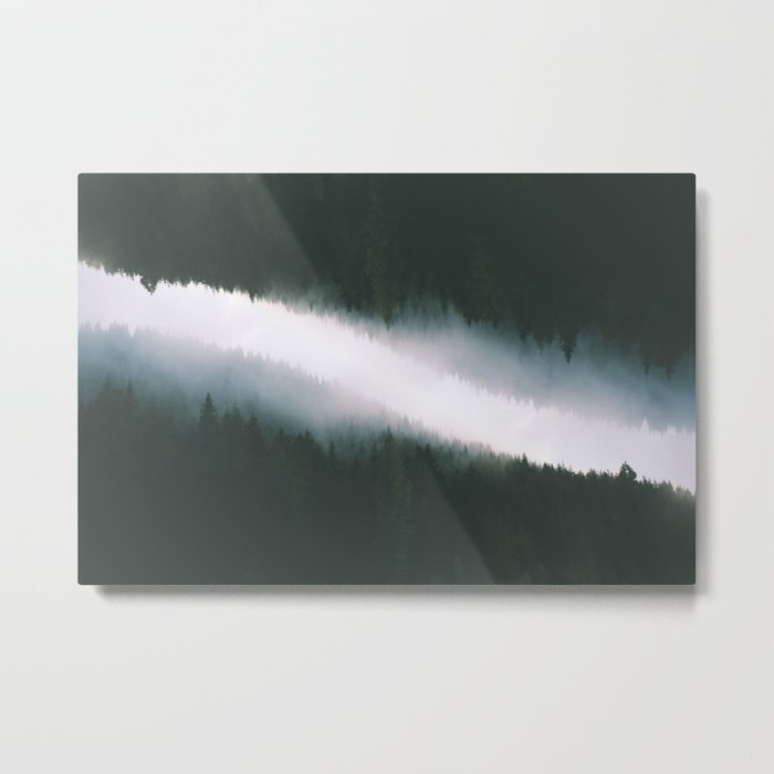Forest Reflections V Metal Print