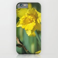 Dancing Daffodil Slim Case iPhone 6s