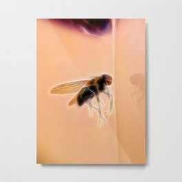 fly : Mirror mirror tell me... the coolest phone case ever ? Metal Print