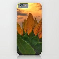 sunflower in the sunset Slim Case iPhone 6s