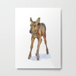 Moose Calf Watercolor Painting Metal Print