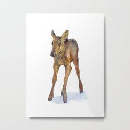Moose Calf Watercolor Painting Metal Print