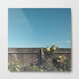 Yellow flowers over a wooden fence Metal Print