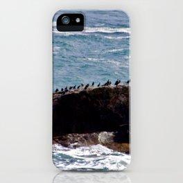 Sea Birds on Rock in Sea iPhone Case
