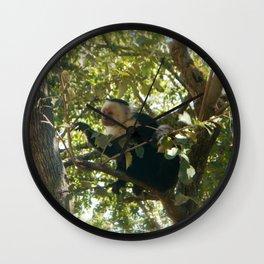 Capuchin Contemplation Wall Clock