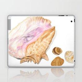 Seashells 01 Laptop & iPad Skin
