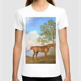 Pumpkin With A Stable-lad - George Stubbs T-shirt