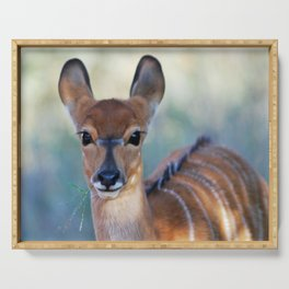 Nyala deer photo Serving Tray