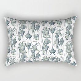 Ernst Haeckel Peridinea Plankton Rectangular Pillow