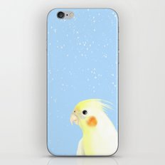 BIRD IN THE SNOW iPhone & iPod Skin