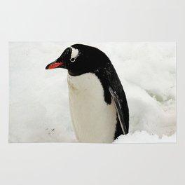 Gentoo Penguin in the Snow Rug