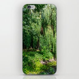 Weeping Willow Tree iPhone Skin