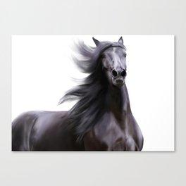 Black running horse Canvas Print