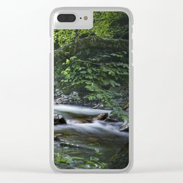 Smoky Mountain Stream in Tennessee Clear iPhone Case