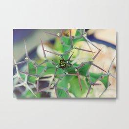 Cactus Spikes Metal Print