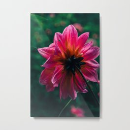 She Didn't Know Her Beauty Metal Print
