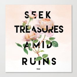 Seek Treasure Canvas Print