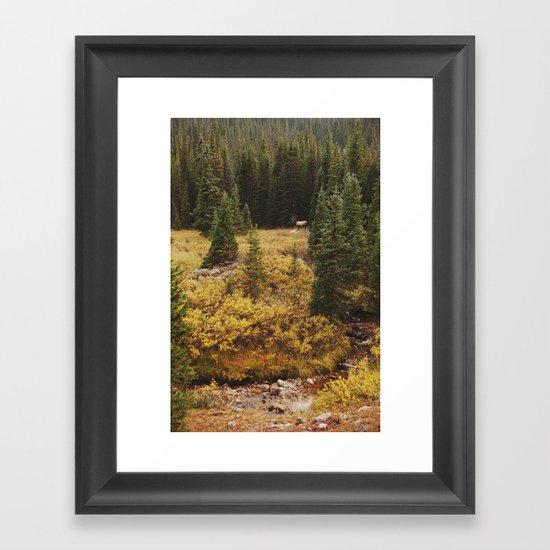 Rocky Mountain Creek Elk Framed Art Print