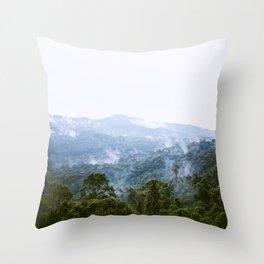 Elephant Mountain View Throw Pillow