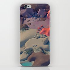 The Cradle Valley iPhone & iPod Skin