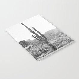 Arizona Desert Notebook