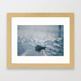 Small Shell Big Sea Framed Art Print