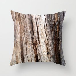 Shiver Me Timbers - 1 Throw Pillow