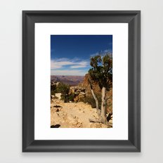 The Miracle Of Nature Framed Art Print
