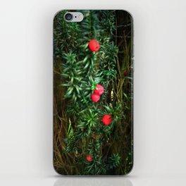 Yew (Taxus) iPhone Skin
