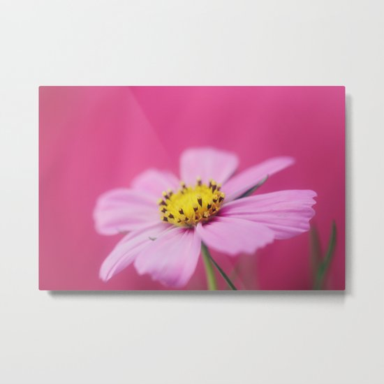 The Girly Side Metal Print