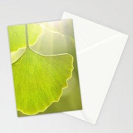 Ginkgo 104 Stationery Cards