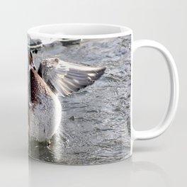 Duck in water Coffee Mug