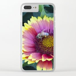 Beautiful red Sunflower with Bee Clear iPhone Case