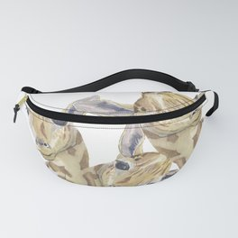 The Trios Fanny Pack