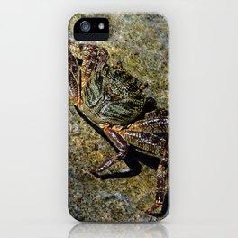 Little Creature Poses 2 iPhone Case