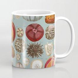Vintage Molluscs Coffee Mug