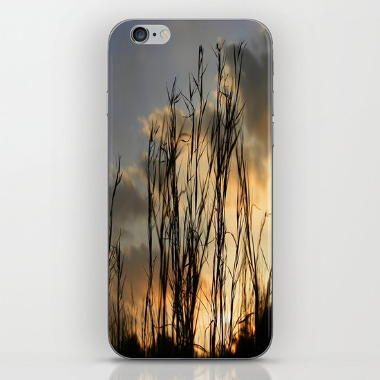 Last Light iPhone & iPod Skin