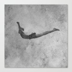 dive Canvas Print
