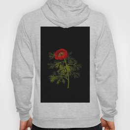 Paeonia Tenuifolia Mary Delany Vintage British Floral Flower Paper Collage Black Background Hoody