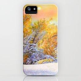 Winter Beauty iPhone Case