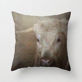 Longhorn cow Throw Pillow
