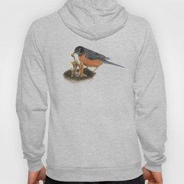 Robins Hoody