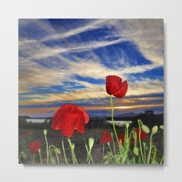 Spring poppies. Sunset. Metal Print