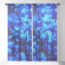 Jellies Sheer Curtain
