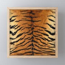 Faux Siberian Tiger Skin Design Framed Mini Art Print