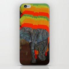 African Elephant iPhone & iPod Skin